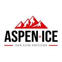 ASPEN-ICE